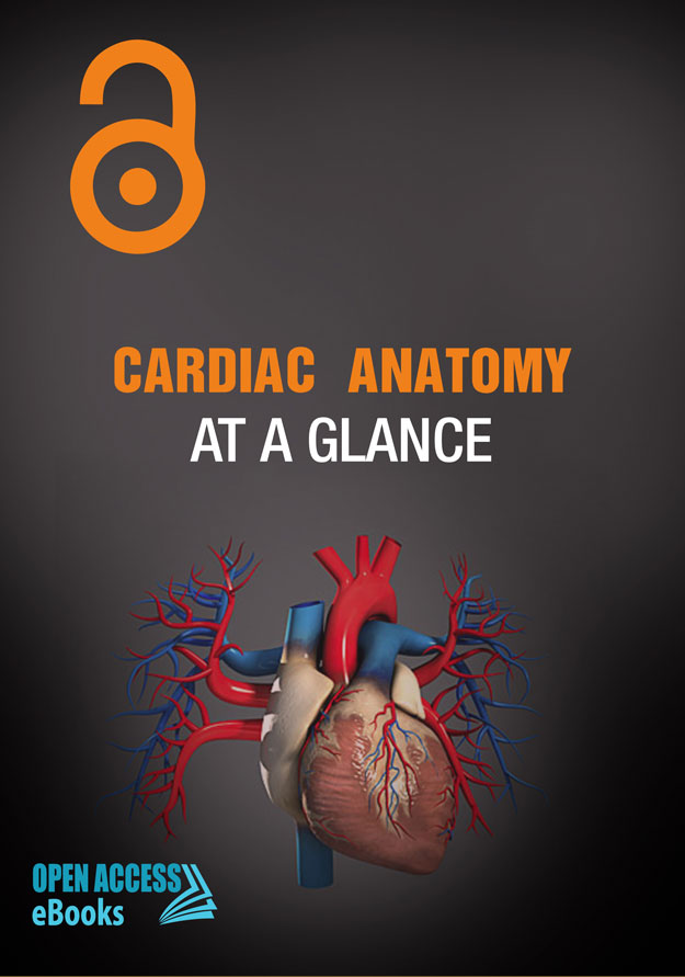 cardiac-anatomy-at-a-glance
